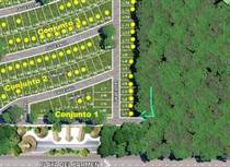 Lots and Land for Sale in Puerto Morelos, Quintana Roo $52,654