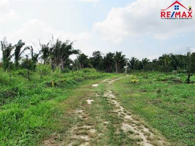 OFF GRID LIVING IN BELIZE - 3 ACRES OF VACANT LAND