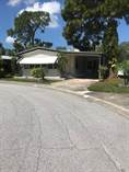 Homes for Sale in Shady Lane Oaks, Clearwater, Florida $37,999