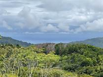 Farms and Acreages for Sale in Platanillo, Puntarenas $395,000