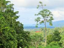 Lots and Land for Sale in Uvita, Puntarenas $89,000