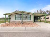 Homes for Sale in Forest Lake Estates, Zephyrhills, Florida $24,900