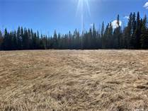 Lots and Land for Sale in Candle Lake, Saskatchewan $49,900
