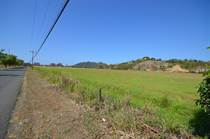 Lots and Land for Sale in Jaco, Puntarenas $43,005,912