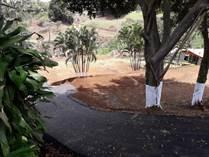 Homes for Sale in Poas, Alajuela, Alajuela $65,000