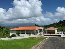 Homes for Sale in Humacao, Puerto Rico $400,000