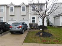 Homes for Sale in Painesville, Ohio $64,900