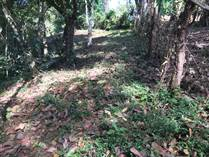 Lots and Land for Sale in Atenas, Alajuela $51,000