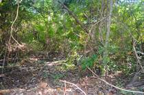 Lots and Land for Sale in Tulum, Quintana Roo $75,000