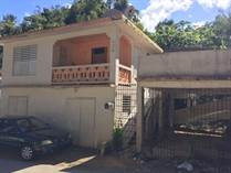 Homes for Sale in Tanama, Arecibo, Puerto Rico $24,900
