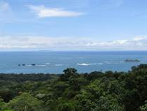 Lots and Land for Sale in Bahia Ballena, Puntarenas $185,000