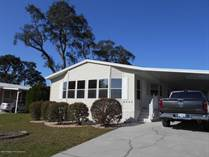 Homes for Sale in Brookridge, Brooksville, Florida $143,563