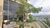 Condos for Rent/Lease in Quantum Metrocenter, San Juan, Puerto Rico $15,000 monthly