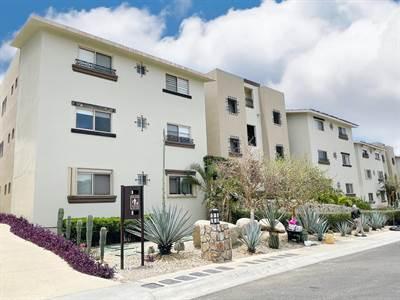 Santa Monica 314