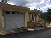 Homes for Sale in Comerio, Puerto Rico $75,000