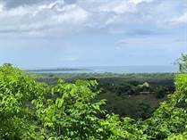 Homes for Sale in Playa Grande, Guanacaste $130,000