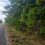 Homes for Sale in Rural, Winnsboro, Louisiana $50,000