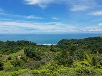 Lots and Land for Sale in Bahia Ballena, Puntarenas $750,000