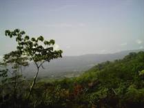 Lots and Land for Sale in Rio Claro, Puntarenas $375,000