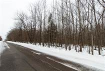 Lots and Land for Sale in Township of Mosinee, Mosinee, Wisconsin $135,000