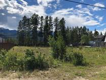 Lots and Land for Sale in Valemount, British Columbia $145,500