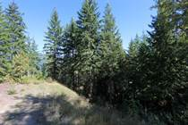 Lots and Land for Sale in Blind Bay, British Columbia $52,700