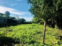 Lots and Land for Sale in Puntarenas, Puntarenas $65,000