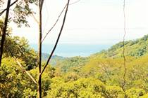 Farms and Acreages for Sale in Uvita, Puntarenas $1,100,000