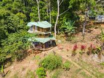 Homes for Sale in Lagunas , Dominical, Puntarenas $165,000