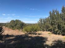 Lots and Land for Sale in Rockin J Ranch, Blanco, Texas $33,900