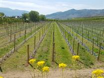 Farms and Acreages for Sale in Highway 3, Osoyoos, British Columbia $2,350,000