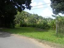 Lots and Land for Sale in Colinas del Yunque, Rio Grande, Puerto Rico $43,000