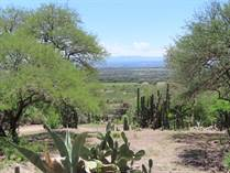 Lots and Land for Sale in carretera a dolores, Guanajuato $350,000