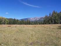 Lots and Land for Sale in Pagosa Springs, Colorado $850,000