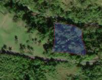 Lots and Land for Sale in PLANAS, Isabela, Puerto Rico $90,000
