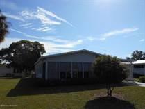 Homes for Sale in Brookridge, Brooksville, Florida $110,500