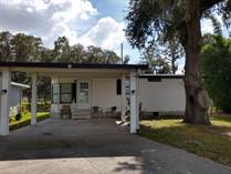 Homes for Sale in The Meadows at Country Wood, Plant City, Florida $23,900