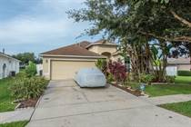 Homes for Sale in Panther Trace, Riverview, Florida $238,900