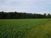 Lots and Land for Sale in Macomb, Michigan $950,000