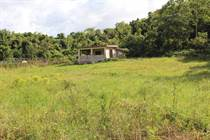 Lots and Land for Sale in Arenales Bajos, Isabela, Puerto Rico $105,000