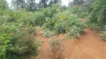 Lots and Land for Sale in Kangemi, Nairobi KES30,000,000
