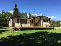 Homes for Sale in Valemount, British Columbia $549,000