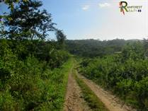 Lots and Land for Sale in San Ignacio, Cayo $37,000