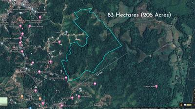 Two Hundred and five Acre Unsurpassed Ocean View Land in Antonio to Quepos