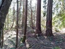 Lots and Land for Sale in Shorecrest, Shelton, Washington $20,000