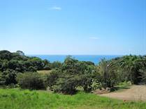 Lots and Land for Sale in Dominical, Puntarenas $124,000