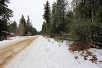 Lots and Land for Sale in Scotch Creek, British Columbia $539,000