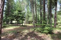Lots and Land for Sale in Troy, Montana $19,999