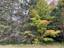 Lots and Land for Sale in North-East, Tiiny, Ontario $119,000