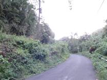 Lots and Land for Sale in Bo. Cordillera, Ciales, Puerto Rico $39,000